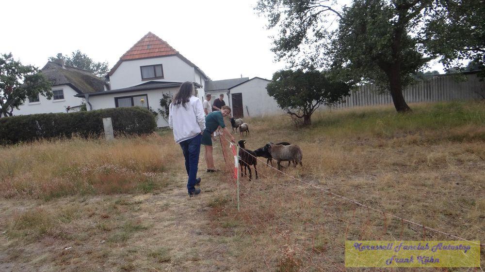 2019.07.19_Neuendorf_Frank-27